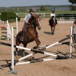 Course de chevaux en direct gratuit Test & opinions